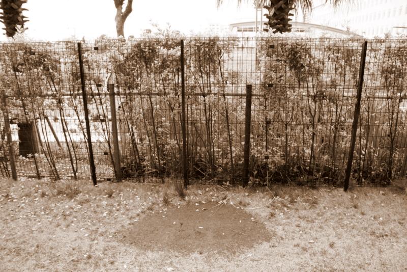花咲園芸総研 舘林正也 施工例 マンション1階専有庭