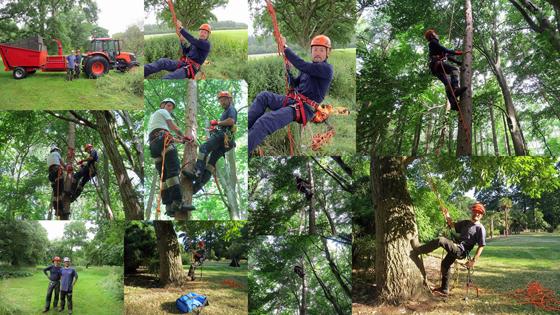 Tree Climbing(ツリークライミング)